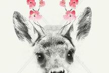 DEER | PRINTS / Deer and Stag print, graphic & design inspiration for printed T-Shirts & Products. #downloadt-shirtdesigns