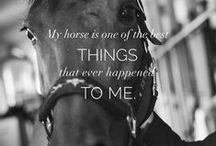 Horse Quotes by Equiline