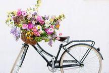 ¡Primavera! / Se acerca la primavera, aquí unos tips para recibirla.