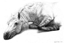 Caballos y el arte / Los caballos y el arte