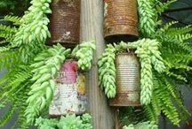 Jardines verticales / Suculentas Kokedamas colgantes y zen