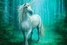 Unicornios / Seres de aspecto joven, generalmente blanco, con un cuerno en espiral, patas de antílope, barba de chivo y una cola de aspecto leonino.