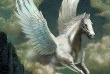 Pegasus / Un pegaso es un cordel alado de naturaleza mágica, inteligente, bondadoso y salvaje. Sólo pueden ser domados por jinetes de ven corazón