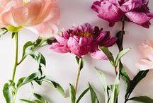 Flores para la más linda / Un regalo de colores para ti mamá