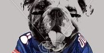 DOG LIFE | PRINTS / Dog print, graphic & design inspiration for printed T-Shirts & Products. #downloadt-shirtdesigns