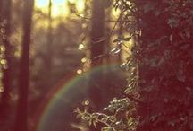 rainbows everywhere! ♡ / Life has the colors that » you « give  and » allow « yourself to see!