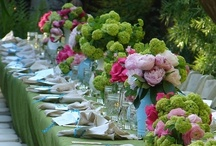 ~ Went to a Garden Party...~ / by Angela Lopaska