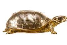 Tortoise / Turtles In Home Decor