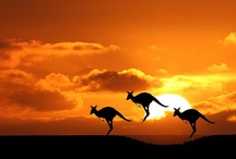Australia / My home is more than just kangaroos and koalas. It's a beautiful country with beautiful beaches, landscapes and people