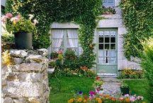 I wish I lived here... / by Cari Tutti