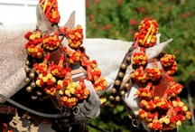 Foire aux Chevaux de Fourques / Premier Dimanche de Septembre depuis plus de 30 ans, célèbre défilé traditionnel avec 1.000 participants, spectacle équestre