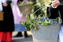 Fête d'Octobre à Bellegarde / La traditionnelle fête qui succède au temps des labeurs et à la rentrée des dernières récoltes tire son essence dans la ruralité. Plus qu'un simple moment de réjouissance, le Fête d'Octobre lie les générations. Par rituel, la date du 15 Octobre se doit d'être dans ce rendez-vous traditionnel
