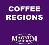 Coffee Regions / -Specialty exotic coffee from around the world-