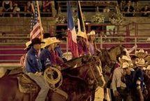 Rodéo Américain / Bull Riding, Barrel Racing, Voltige Equestre...