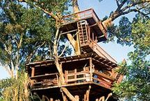 Treehouse Planning