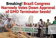 GMO Warriors / Fighting the good fight / by Moms Across America