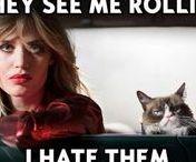 DF ♡ #opelgoesgrumpy #grumpycat / grumpy cat loves opel ...not!