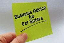 Pet Sitter Startup