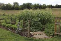 Garden / My Garden