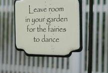 Ogród wróżek / Fairy's garden