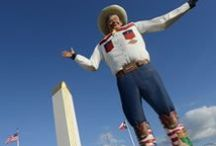 Dallas: Arts & Attractions / Music, Theater, Museums, Dance, Parks, Cultural Events