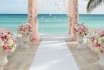 Wedding Arch Inspiration / Get all your unique wedding arch decor right here!