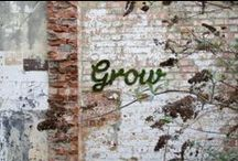 jardin·organique / by Terri Nacke