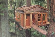 Tree Houses / by Michael Rench