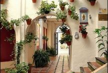 Spain / by Darby