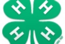 All Things 4-H