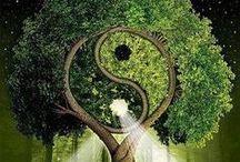 Healing / Reiki healing, chakras and energy!!