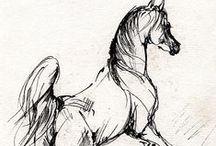 Creature Anatomy | Horses