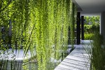 Casas GREEN    VV2 arquitetura   blog / Viva o verde! Casas para quem ama espaços verdes.