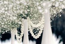 {wedding decorations}
