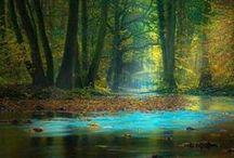 Franconian Natural Beauty