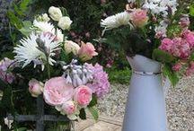 Des fleurs, de la douceur`•. ¸ ¸. ☆