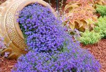 Jolies idées pour le jardin`•. ¸ ¸. ☆ / Déco sympa, tutos pratiques