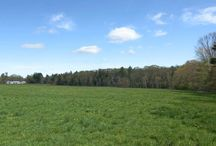 The Berwicks, York County Maine