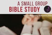Small Group Things / Books, studies, games, and food for your small group. Women's Bible Study ideas as well.