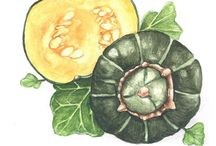 Squash Recipes / by Denna Magee