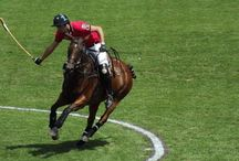 Polo tournaments / StaaG and our teams at British Polo events