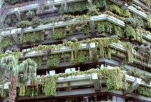 VERT / street │ urban │ nature