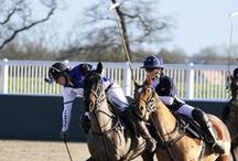 StaaG and polo / We are proud to sponsor three leading university polo teams - Warwick, Exeter and Cardiff. See more at www.staag.co
