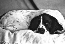 #TheMoreYouKnow About Sleep