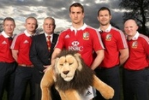 Come on the Lions