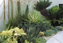 Home {Outside} / #Garden #Patio #Entrance #Pool