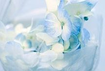 Soft & Lovely Blue