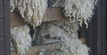 Baa ~ Ram ~ Ewe / To your breed, your fleece, your clan be true. Sheep be true. Baa - ram- ewe!