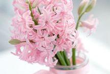 Spring....i ♥ it!!!