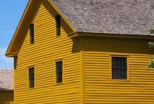 ~ Mustard ~